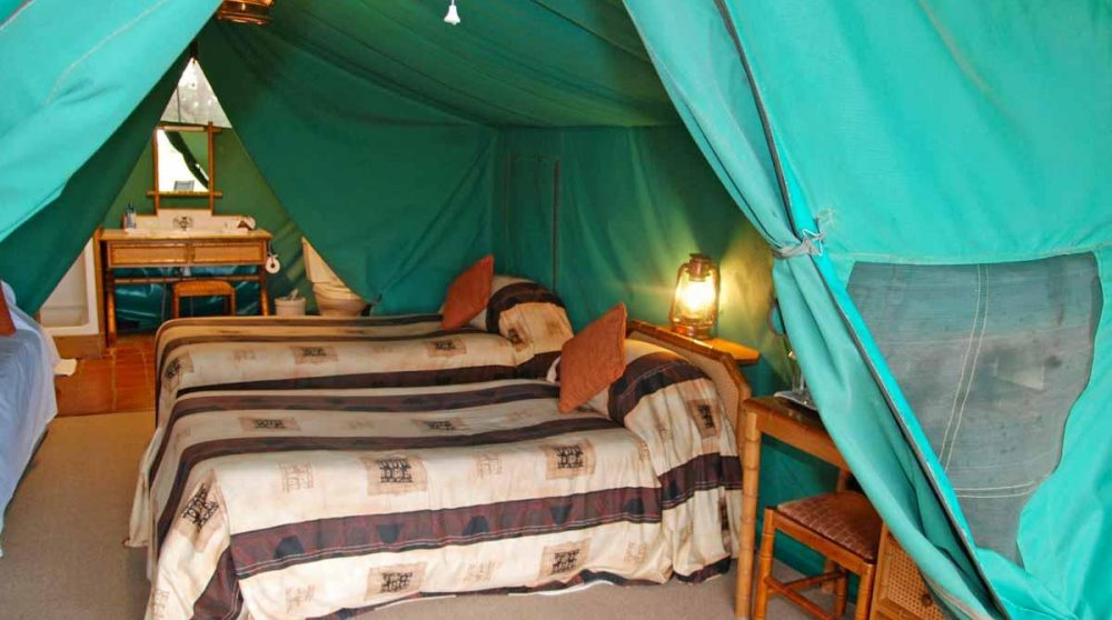 Une tente du camp à Old Pejeta