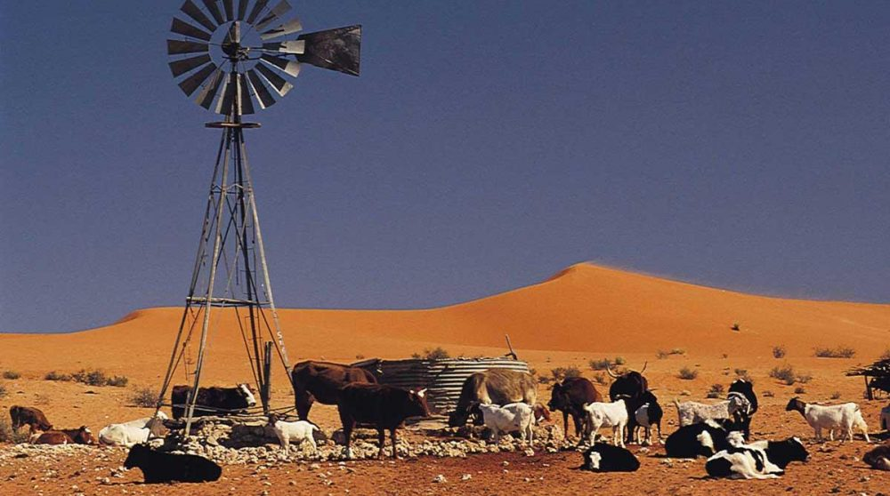 Ferme dans le Kalahari