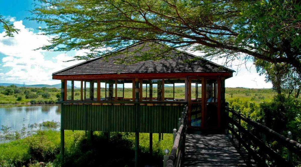 Une terrasse avec vue sur le lac