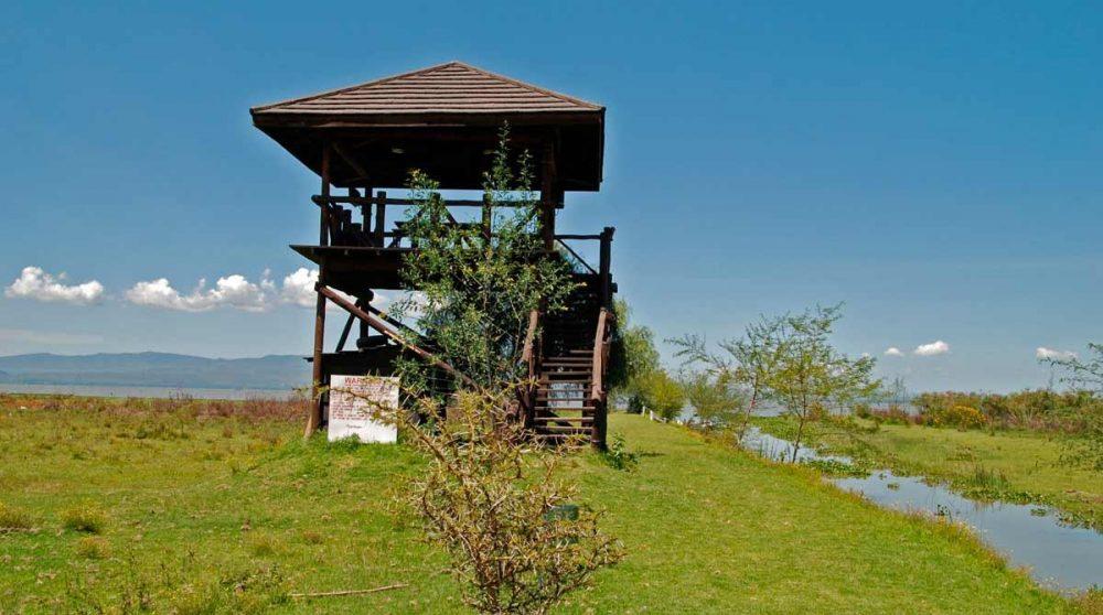 Un observatoire du lodge