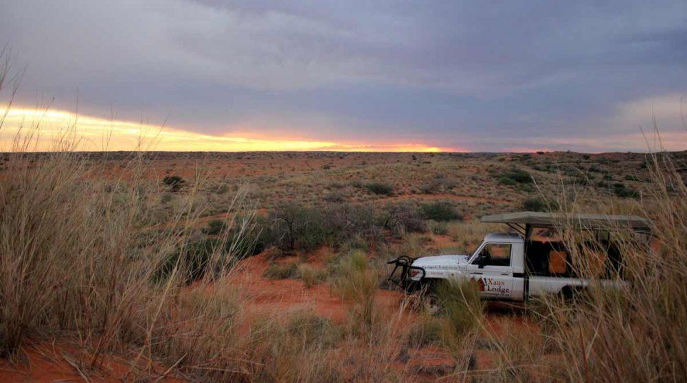 Départ matinal en safari