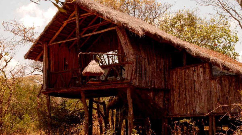 Une chambre treehouse