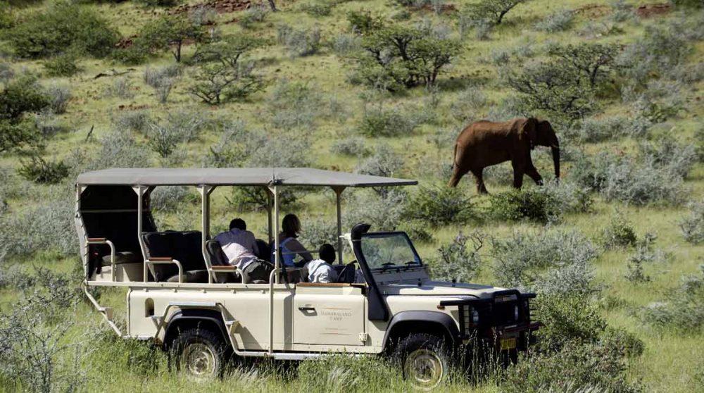 Safari près du Damaraland Camp