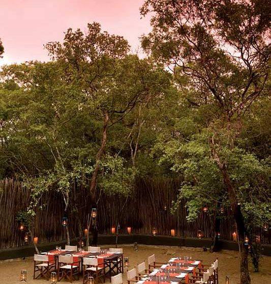 Une soirée au Phinda Forest Lodge