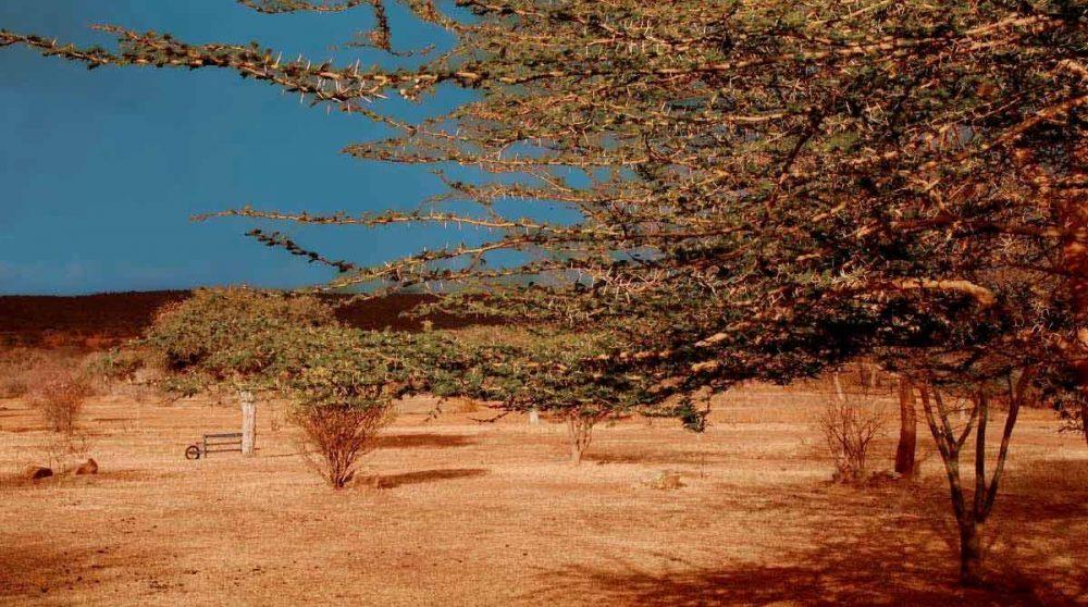 La nature au Sosian