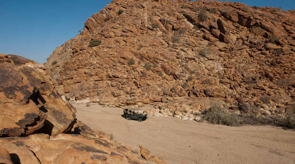 Expédition en 4x4 à la recherche des animaux dans le Kalahari
