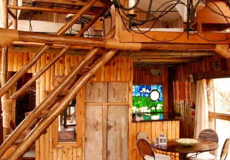 Une treehouse à deux étages