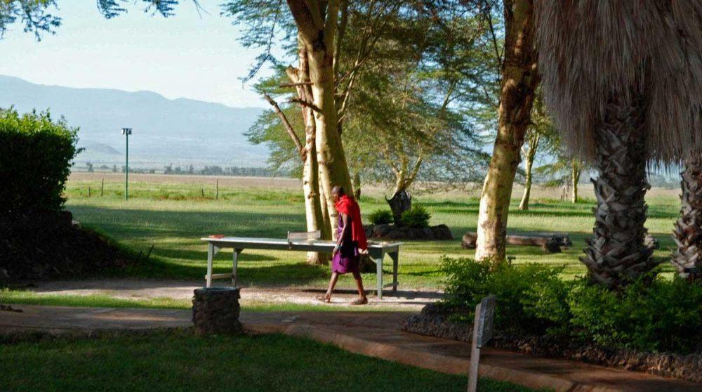 Un massaï dans le jardin à Amboseli