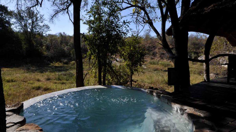 La nature vue depuis la piscine en Afrique du Sud