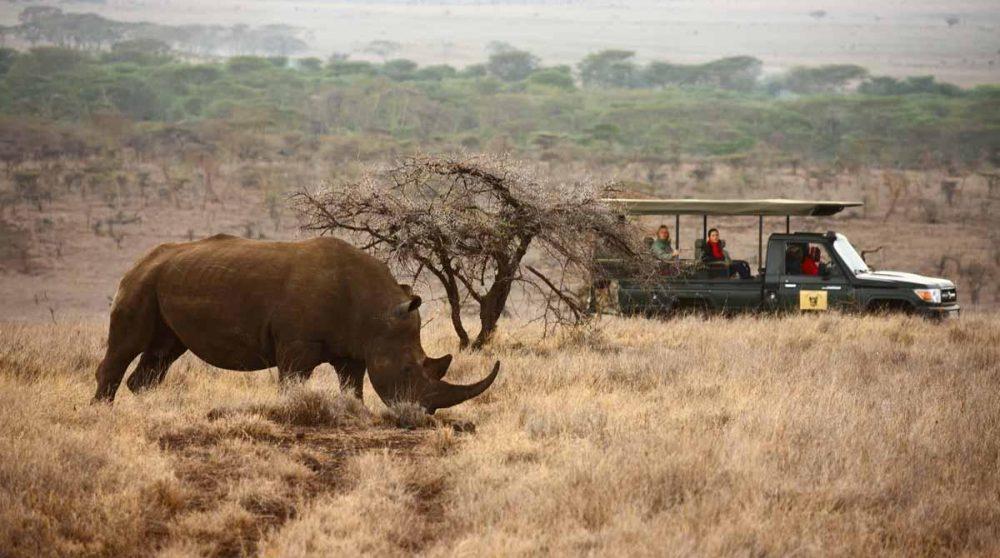 Départ en safari au petit matin
