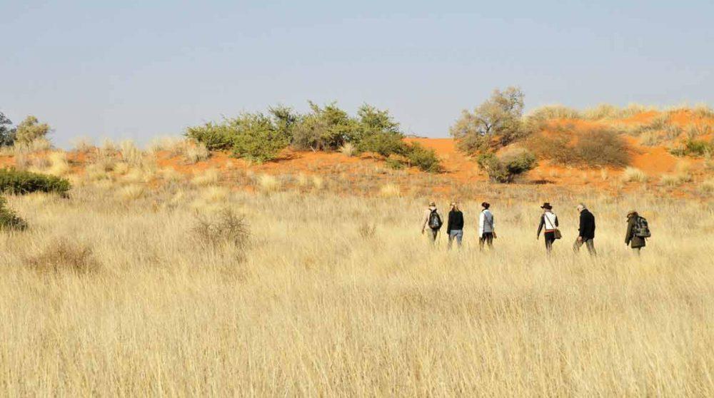 Départ d'une marche dans le désert