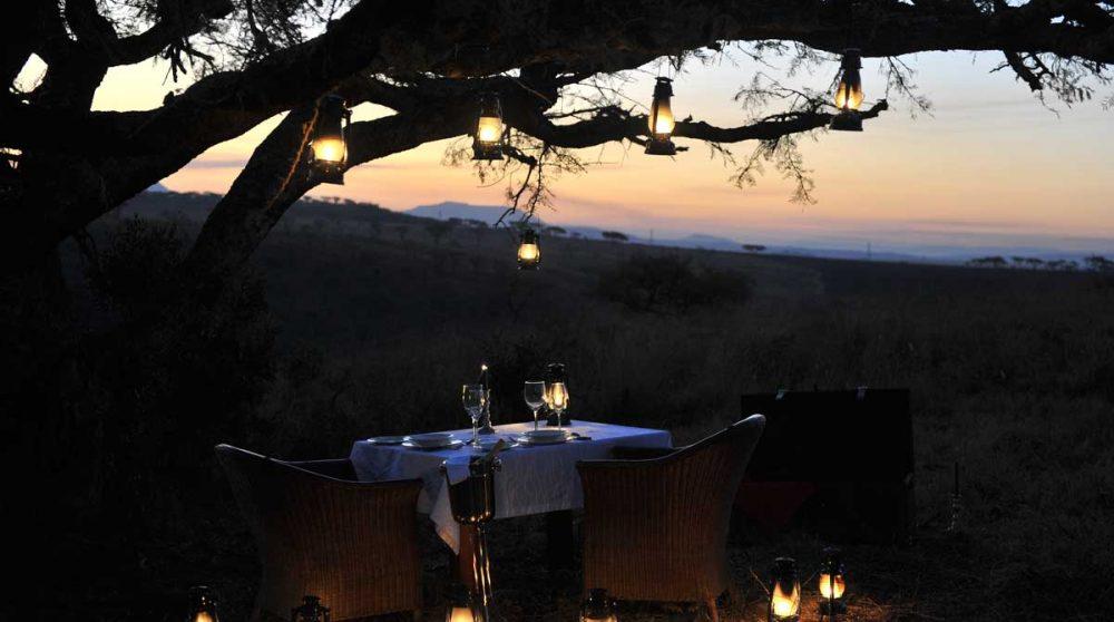 Un moment romantique dans la savane