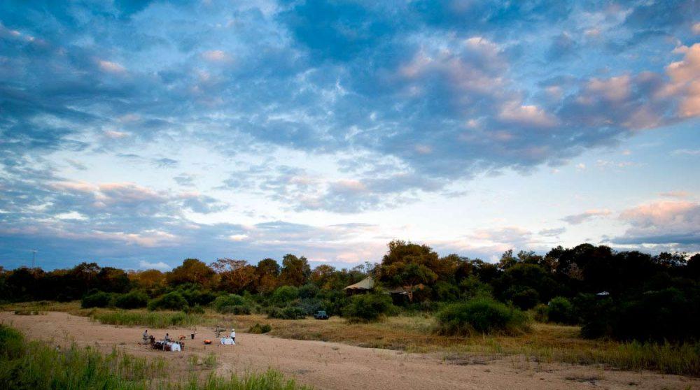 Vue sur la nature près du Ngala Tented Camp