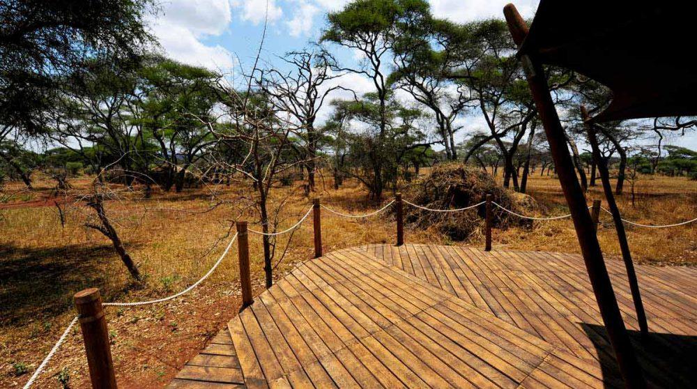 La vue depuis une tente au Swala Camp