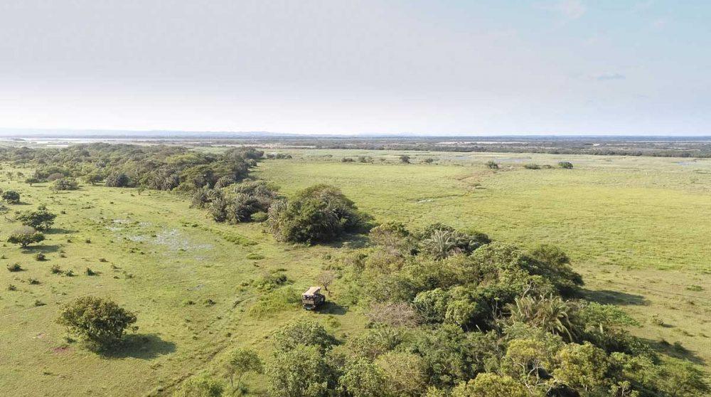 Safari en 4x4 dans le parc iSimangaliso