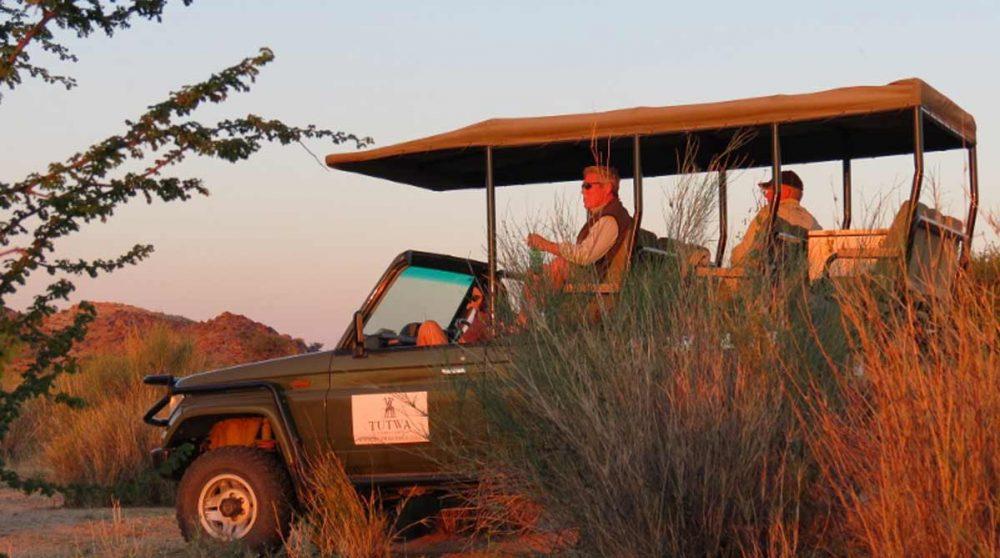 Safari en 4x4 en fin de journée dans le Kalahari
