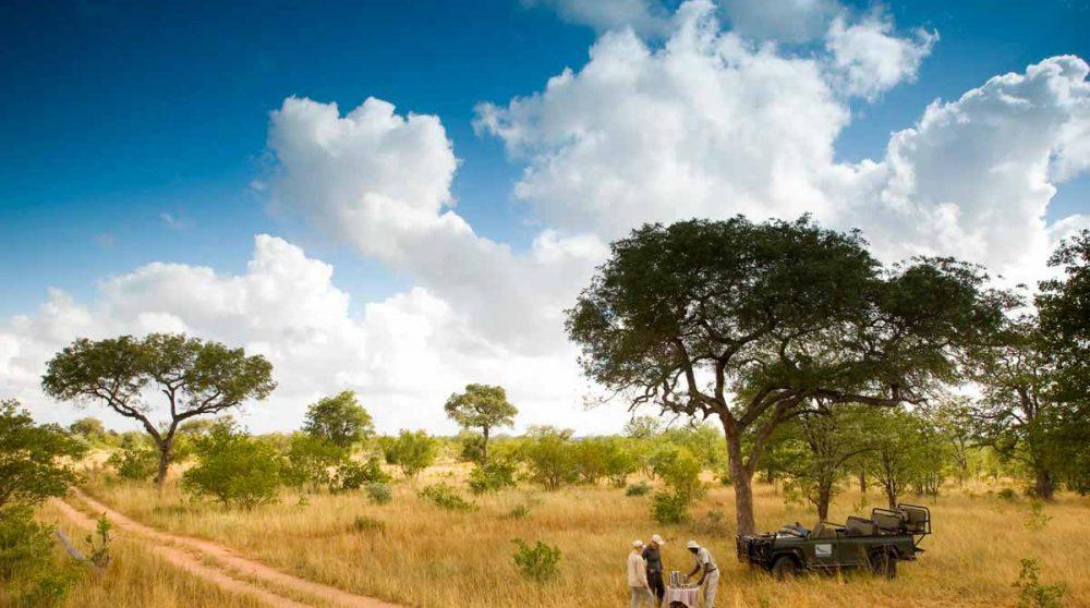 Journée safari en Afrique du Sud