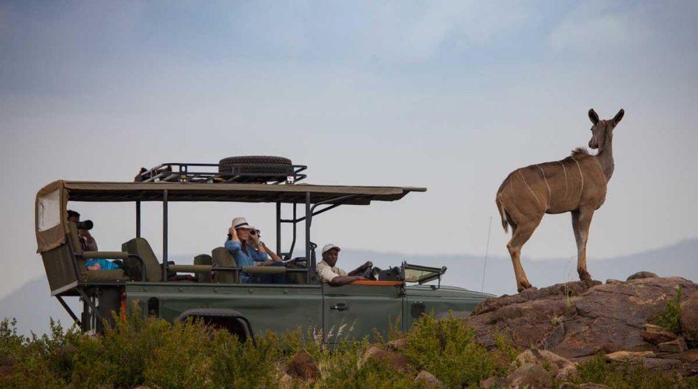 Départ en safari du Loisaba Tented Camp