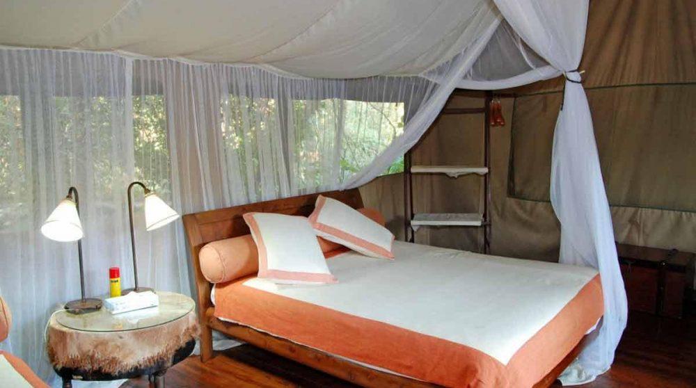 Tente double