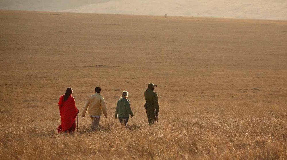Marche dans la savane à Lewa Safari Camp
