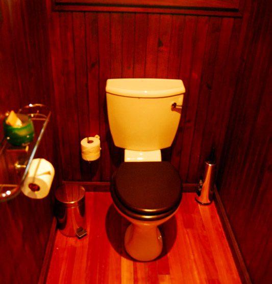 Toilettes d'une chambre au Phinda Vlei Lodge