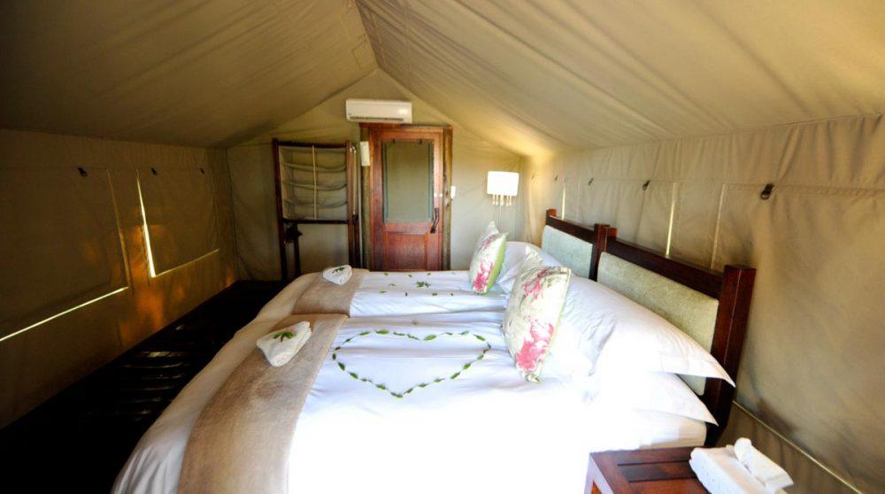 Lits dans une tente à Timbavati