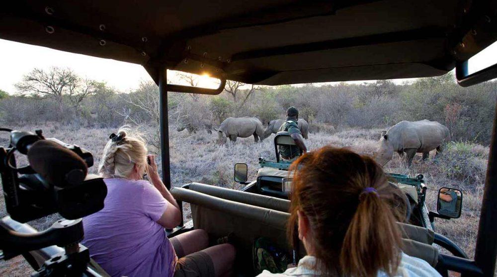 En safari près du parc Kruger