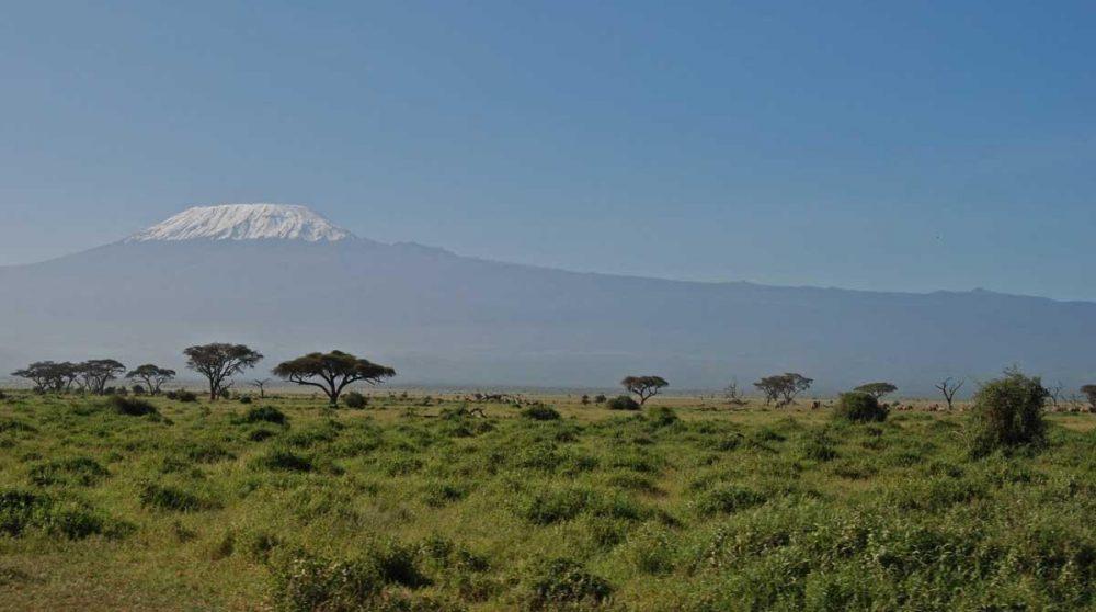 Une vue sur la nature d'Amboseli