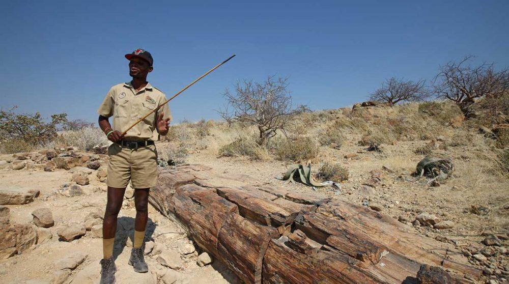 Le désert du Damaraland