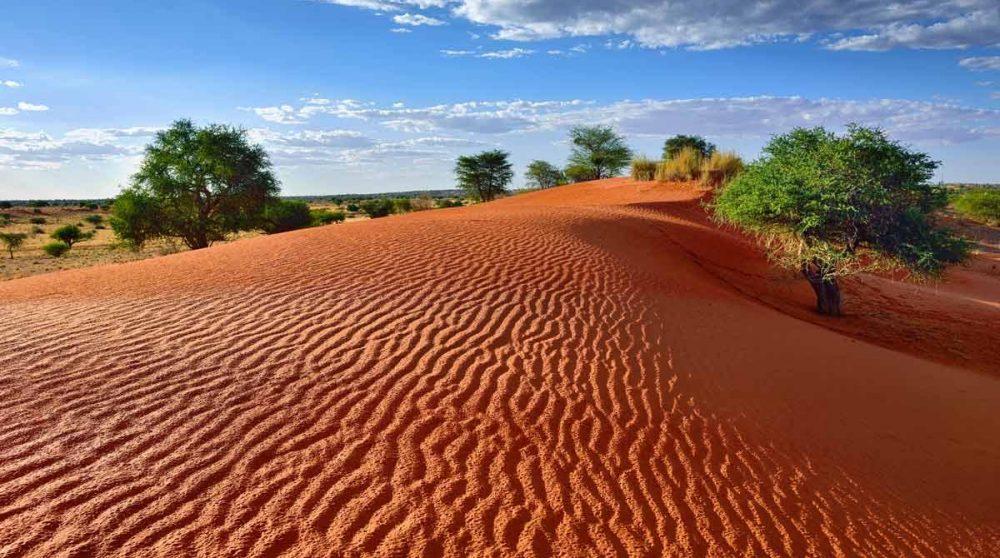 Découvrez le Kalahari lor de votre voyage