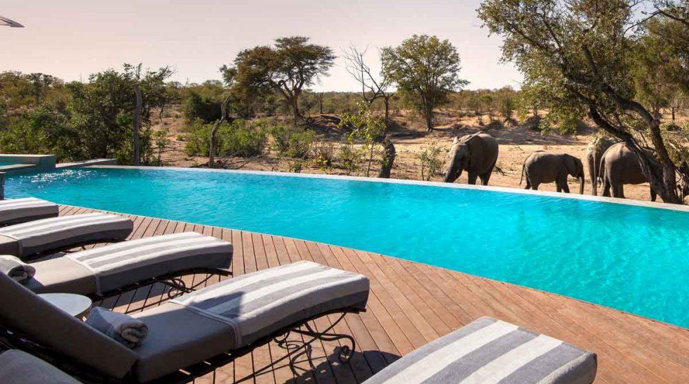 La piscine du Ngala Safari Lodge dans la réserve de Timbavati, en Afrique du Sud