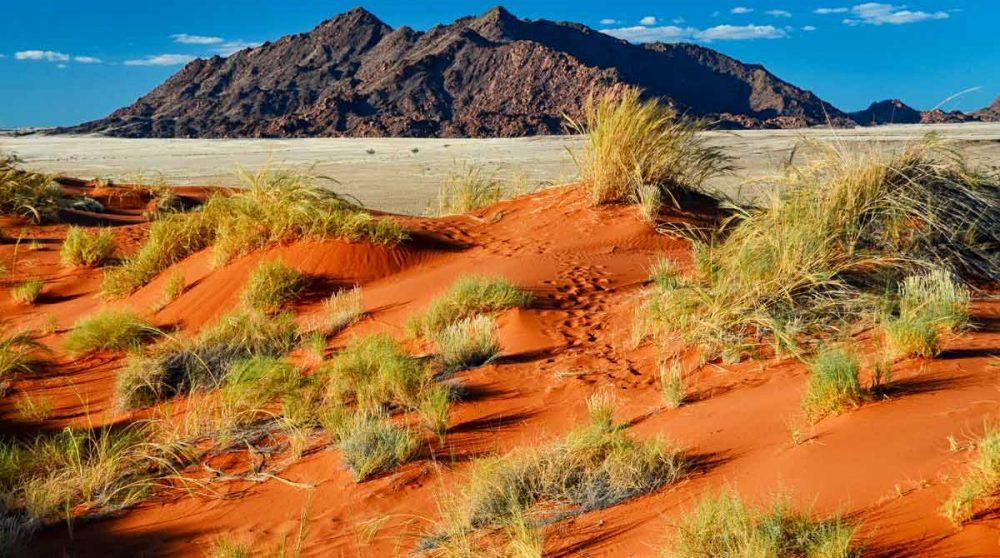 Un paysage de Namib Rand Reserve