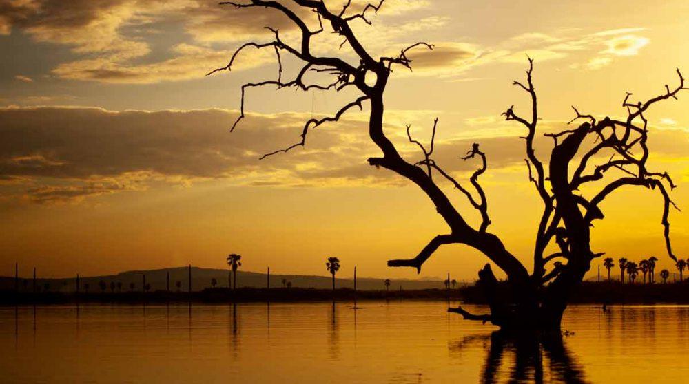 Le lac Manze à Selous