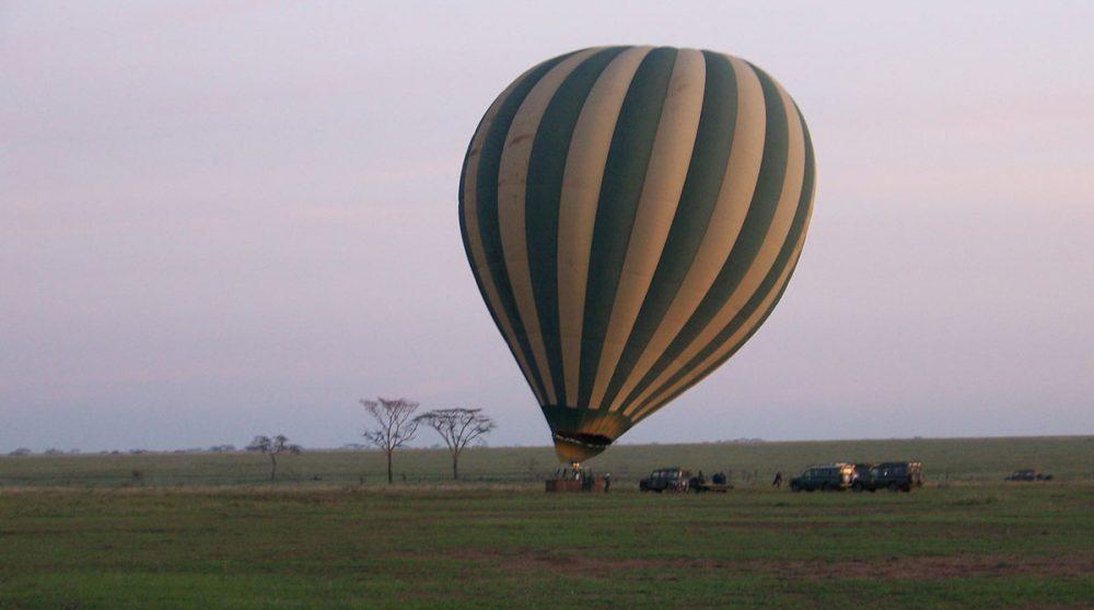 Le Serengeti National Park à voir lors de votre voyage