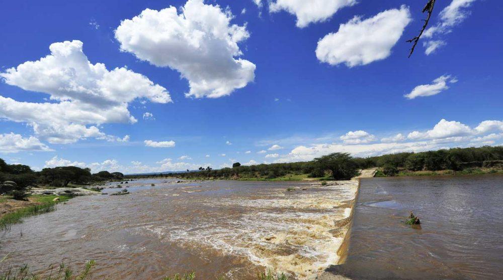Le Serengeti sous un ciel dégagé