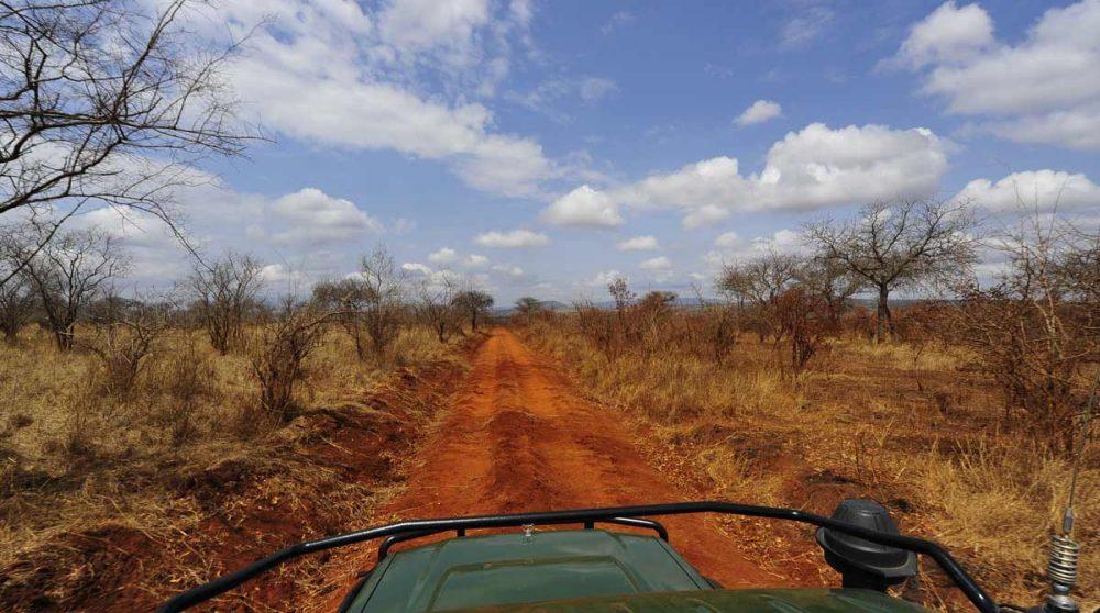 Les routes du Tarangire