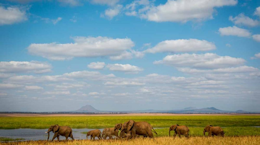 Le Tarangire et ses terres