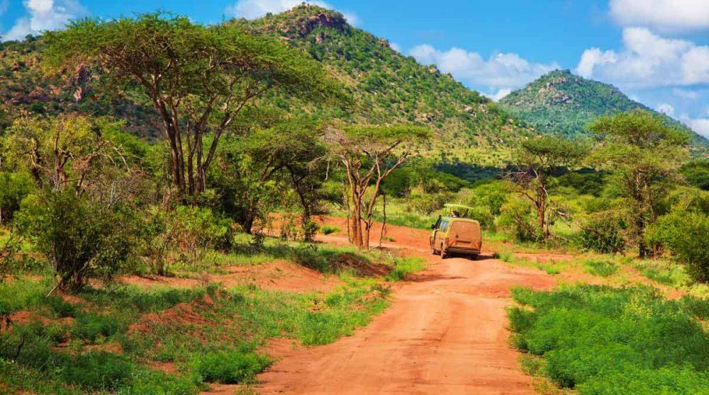 Le parc de Tsavo Ouest et ses chemins de terre