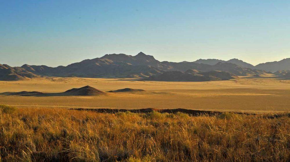 Wolwedans, à voir lors de votre voyage en Namibie