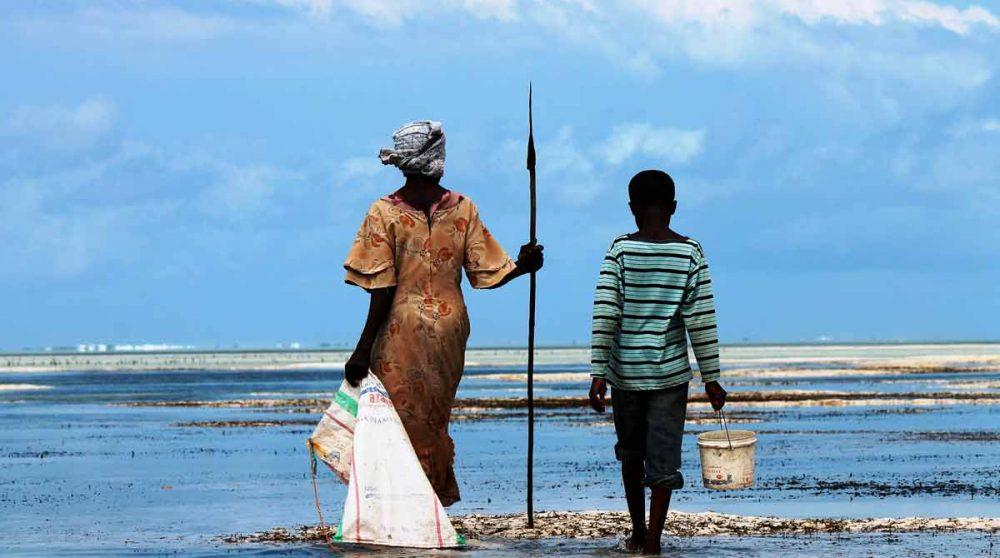 Le lagoon de Zanzibar